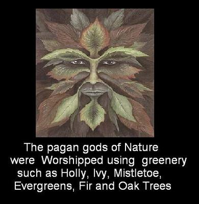 THE PAGAN GODS OF NATURE WERE WORSHIPPED USING GREENERY SUCH AS IVY HOLLY MISTLETOE EVERGREENS FIR A